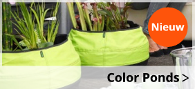Color ponds